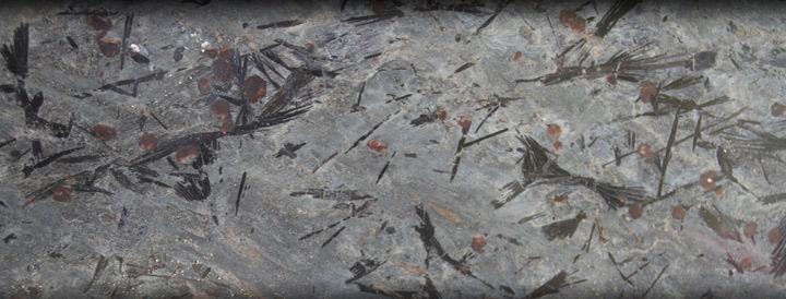 crowsfoot-header01